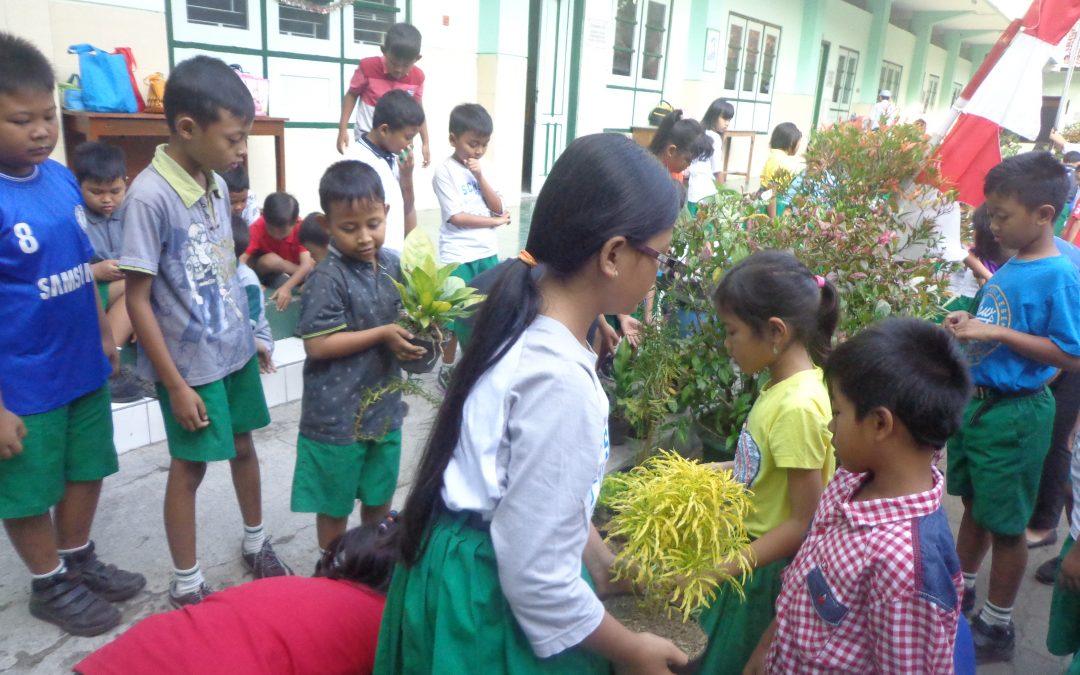 Mempercantik Sekolah dengan Taman Kelas